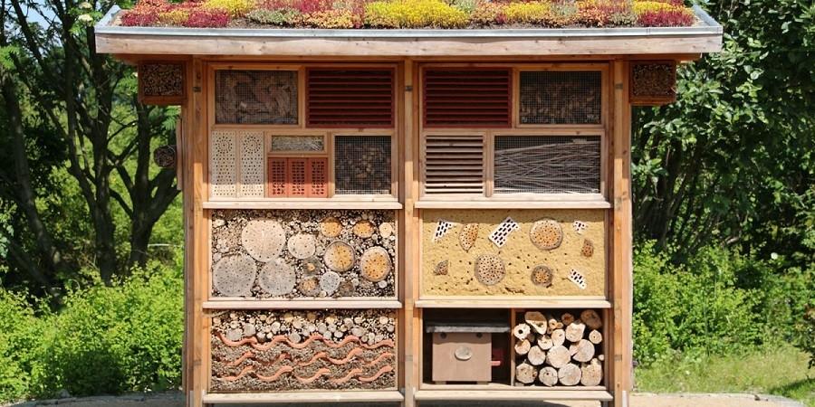 Mercredi des enfants « Construction d'un hôtel à insectes »