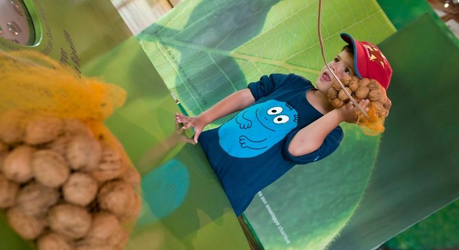 Visite enfants + goûter à la noix